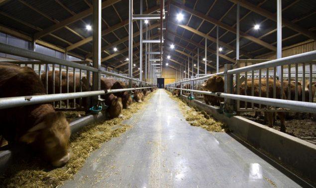 Pressebild_LemTec_BTO41_Agrartechnik